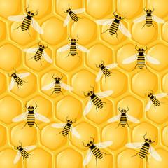 many bees on honeycomb