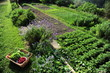 Jardinage bio