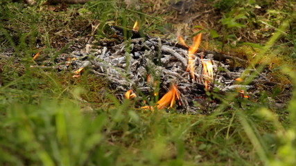 Campfire blazes in wood