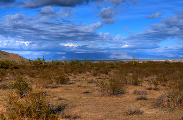 Desert Storm Forming