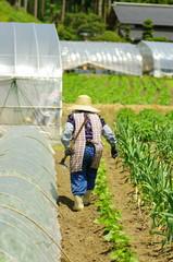 農業国日本