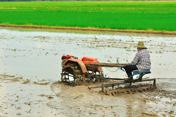 farmer with rice tractor