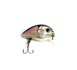 beautiful fishing lure