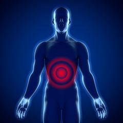 Männlicher Oberkörper – Magenschmerzen und Bauchschmerzen