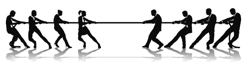 Women versus men business tug of war competition