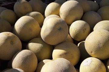 pile of cantaloupe