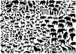 enormous animals silhouettes collection - 32766037