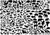Fototapety enormous animals silhouettes collection