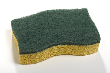 sponge with green abrasive