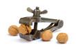 Leinwandbild Motiv Nut in a vice