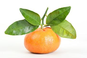 Mandarine auf weissem Hintergrund