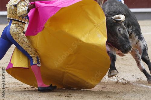 In de dag Stierenvechten Toro y torero