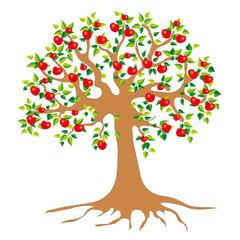 Baum mit Früchte