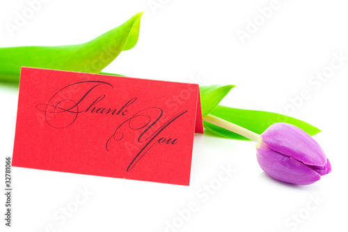colorful tulips and a card signed thank you isolated on white