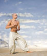 Tai Chi Martial Art Background