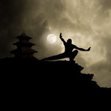 Kung Fu Martial Art Background