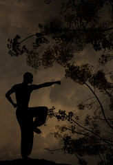 Spiritual Man Practises Martial Arts Background