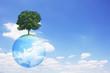 地球儀と木