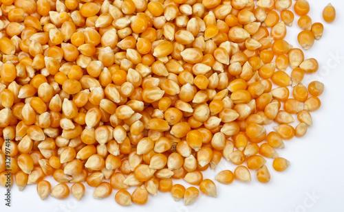 Leinwanddruck Bild maïs