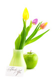 colorful tulips in vase,apple and a card signed thank you isolat