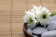 Wooden bowl of with fresh white chrysanthemums and stones