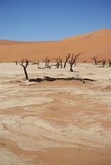 Dead Vlei Desert Namibia