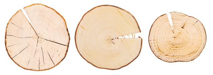 Three wooden cross sections on white background