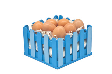 Eggs in the fence