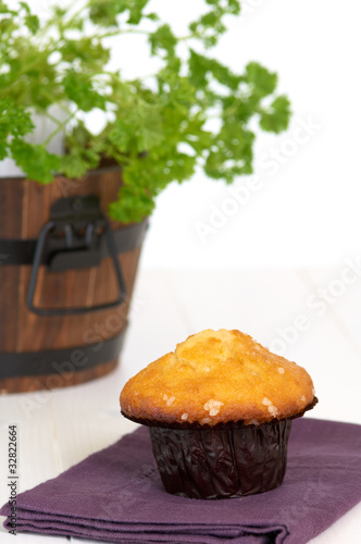 Muffin on the table, in background a green plant