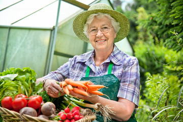 Senior woman with the harvested vegetables