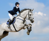 Equestrian jumper - young girl jumping with dapple-grey horse poster