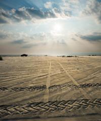 Sandy Coast In The Sunset