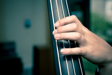 hand and contrabass