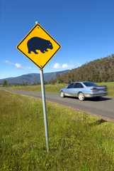 Wombats crossing sign and  car. Tasmania, Australia.