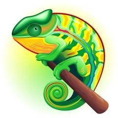 Camaleonte-Chameleon-Caméléon-Cartoon