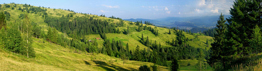 Panoramic view of summer Carpathian mountains, Ukraine