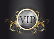 VIP - Very Important Person