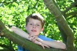 Glücklicher Junge sitzt in einem Baum