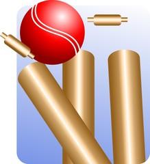 Illustration of ball hit the stump