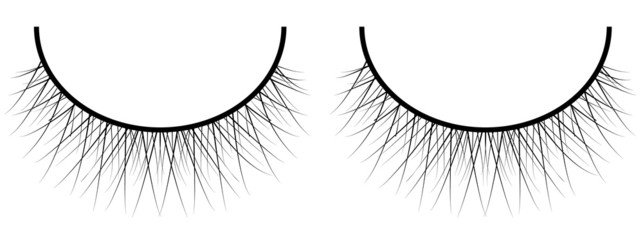 beautiful vector eyelashes isolated on white background
