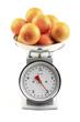 Oranges au kilo