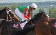 Jockeys at full gallop