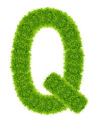 green grass letter Q Isolated