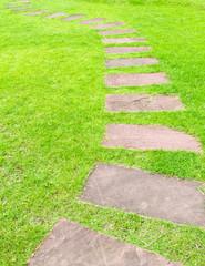 walking stone on green grass
