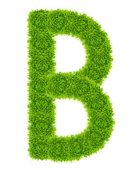 green grass letter B Isolated