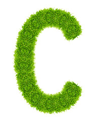 green grass letter C Isolated