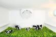 Leinwandbild Motiv Freshness concept. A field with cows inside the fridge