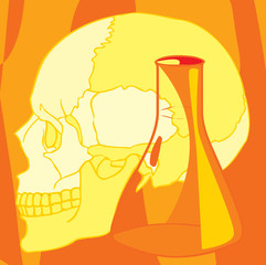 Close-up view of human skull and beaker
