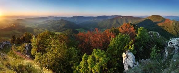 Summer panorama of the Carpathian Mountains