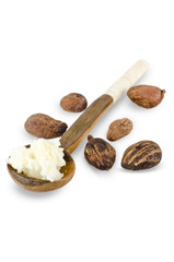 spoon of shea butter cream and shea nuts